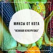 Миксы для кальяна - Нежная кукурузка (MustHave Melonade, MustHave Orange Team, Sebero Corn, Daily Hookah Сливочный Крем)