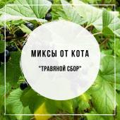 Миксы для кальяна - Травяной Сбор (Chabacco Lemongrass, Tangiers Brambleberry, Tangiers Cane Mint)