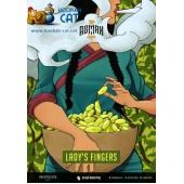 Табак Asman Lady's Fingers (Белый Виноград) 40г Акцизный
