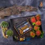 Табак Burn Cactus (Кактус) 20г Акцизный
