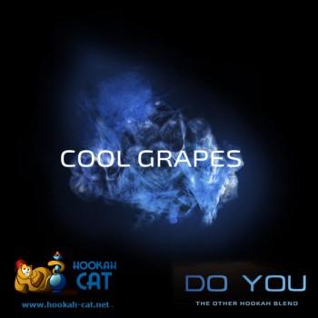 Бестабачная смесь для кальяна Do You Cool Grapes (Чайная смесь Ду Ю Ледяные Ягоды) 50г купить в Москве недорого