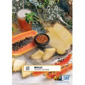 Табак Element Air Maui (Ананас Папайя Воздух) 40г Акцизный