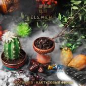 Табак Element Water Cactus Fig (Кактусовый Финик Вода) 100г