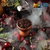 Табак Element Water Cherry (Вишня Вода) 100г