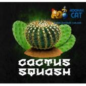Табак Krass L-Line Cactus Squash (Кактус Сквош) 100г Акцизный