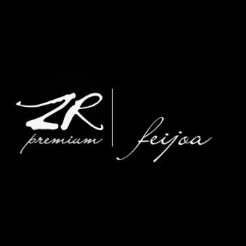 Премиальный табак для кальяна ZR Premium Feijoa (Фейхоа) 100г купить в Москве недорого