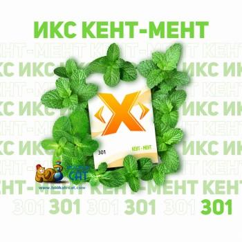 Табак для кальяна X (Икс) Кент Мент (Перечная Мята) 50г Акцизный