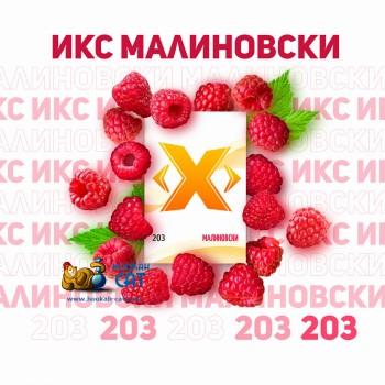 Табак для кальяна X (Икс) Малиновски (Малина) 50г Акцизный